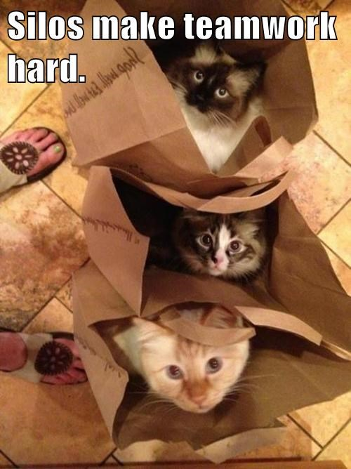 """UX Kitteh meme image of 3 cats in bags, with the line """"silos make teamwork hard."""""""