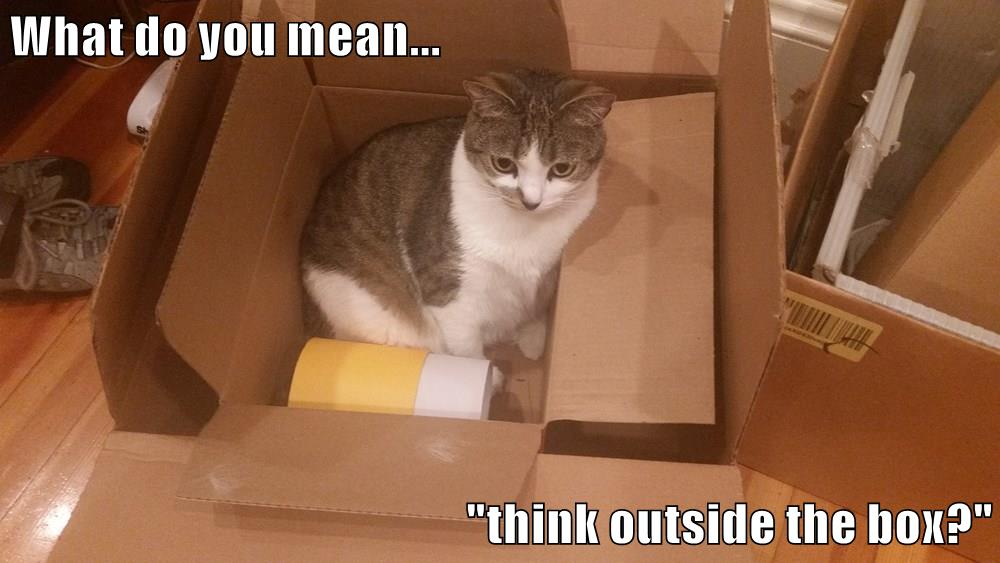 "UX Kitteh contribution: cat in a box saying ""What do you mean... think outside the box?"""