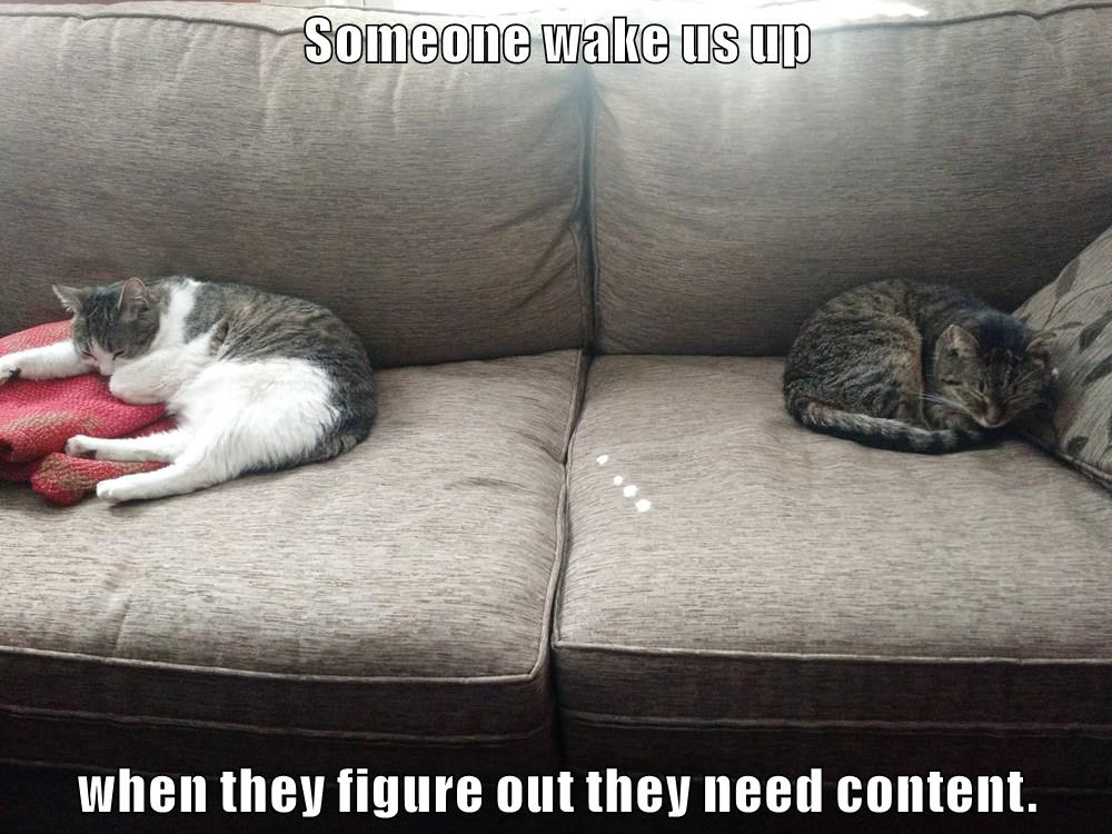 "UX Kitteh contribution: cats sleeping on a couch, saying ""Someone wake us up when they figure out they need content."""