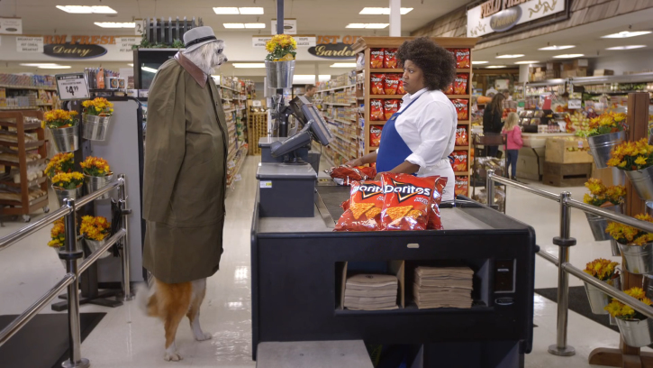 Image from a Doritos commercial of dogs pretending to be people to buy Doritos. Instagram's poor UX felt like dogs pretending to be UX experts.